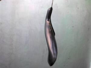 Hanger Tipe A (samping)